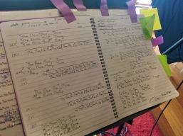 Some of Lisa Young's notes